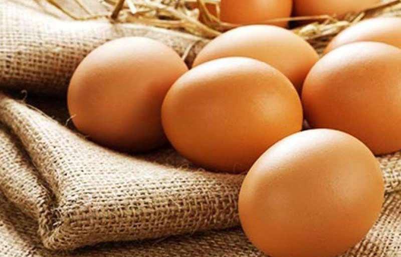 Bạn có thể thêm trứng vào thực đơn dinh dưỡng hằng ngày của con. (Ảnh: Internet)