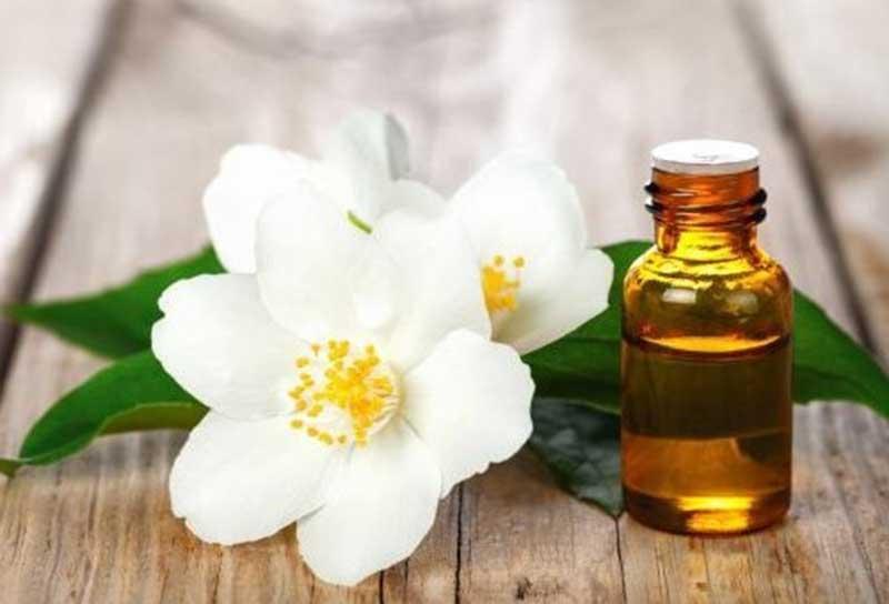 Tinh dầu hoa nhài giảm thiểu căng thẳng, lo lắng và ngủ ngon hơn. (Ảnh: Internet).