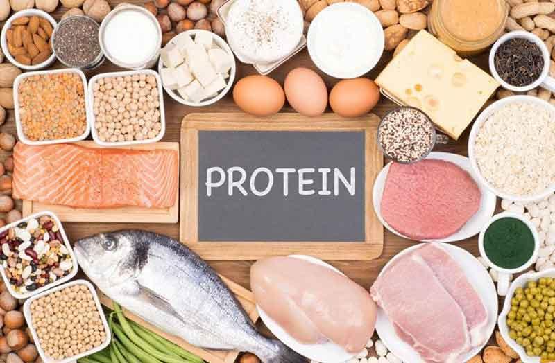 Cơ thể quá tải protein có dấu hiệu gì?. (Ảnh: Internet)